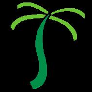 Software Development Internships – Summer 2019